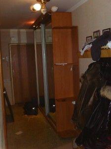 шкаф купе в гостинной и прихожей